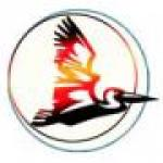 ЧП «Пеликан» - логотип